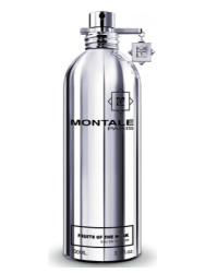 Montale Paris - Montale Paris Fruits Of The Musk 100ml Unisex Tester Parfüm